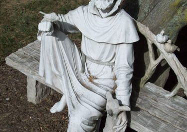Prayer for Feast of St. Francis