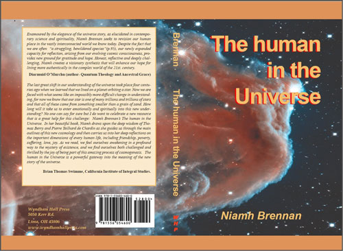 The human in the Universe