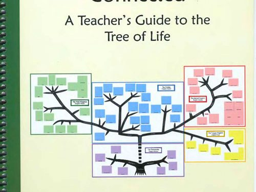 Kingdoms of Life Connected: A Teacher's Guide to the Tree of Life