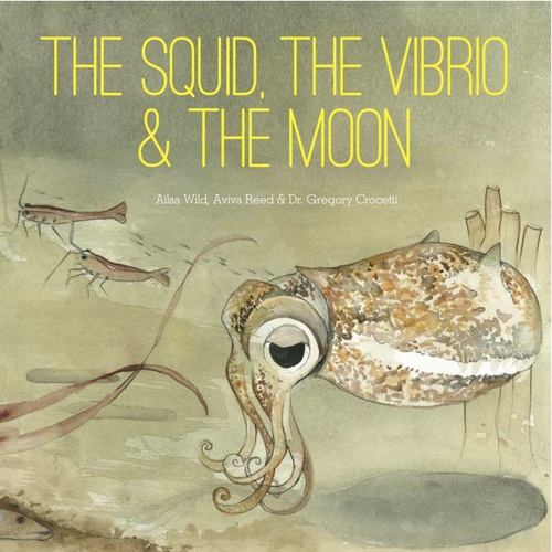 The Squid, the Vibrio & the Moon