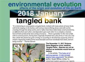 January 2018 Environmental Evolution newsletter