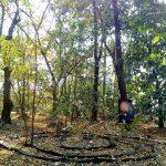 Big History Engagement through weekly Cosmic Walk, Tarumitra, Bihar, India