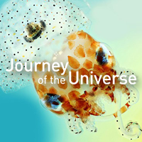 Synergy | Journey of the Universe Podcast